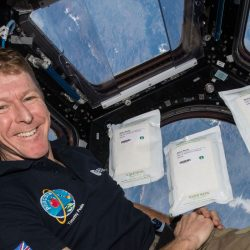 Tim Peake in ISS Cupola